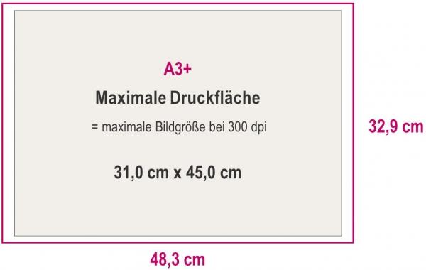 Maximale Druckfläche A3+